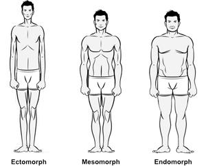 Cele 3 tipuri somatice
