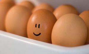Proteine din oua de gaina