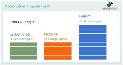 Calorii pe gram