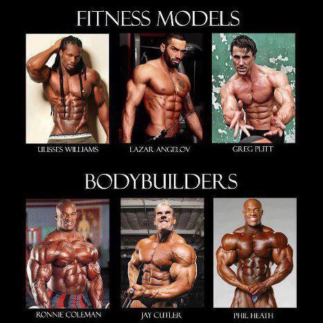 fitness models vs bodybuilders