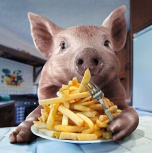 Porc mancand
